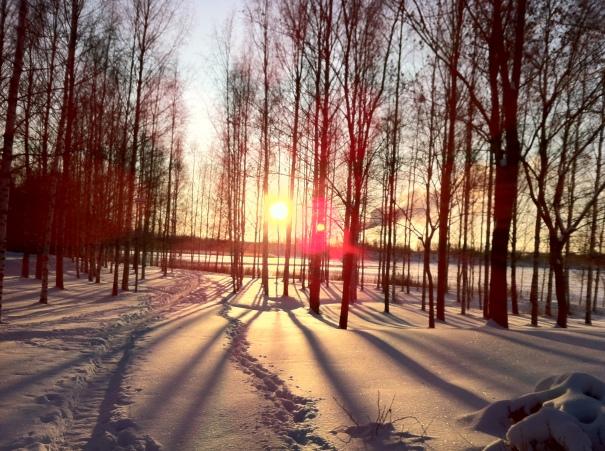 winter sun mikkeli 2012
